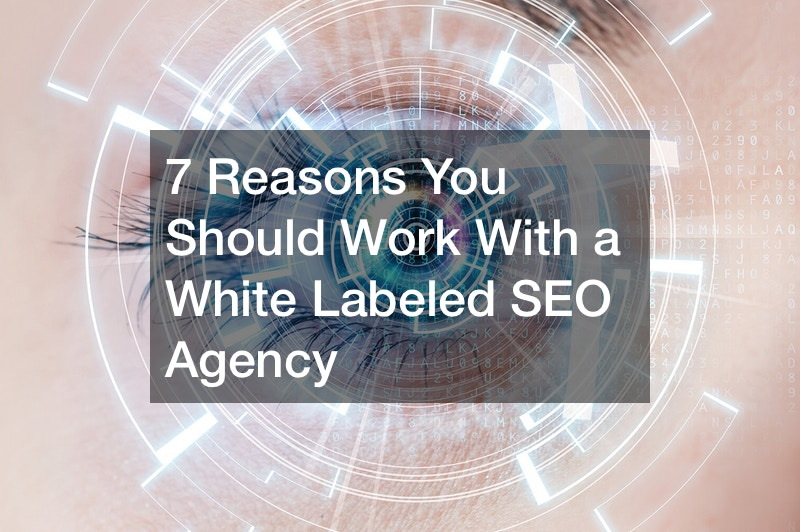 7 Reasons You Should Work With a White Labeled SEO Agency