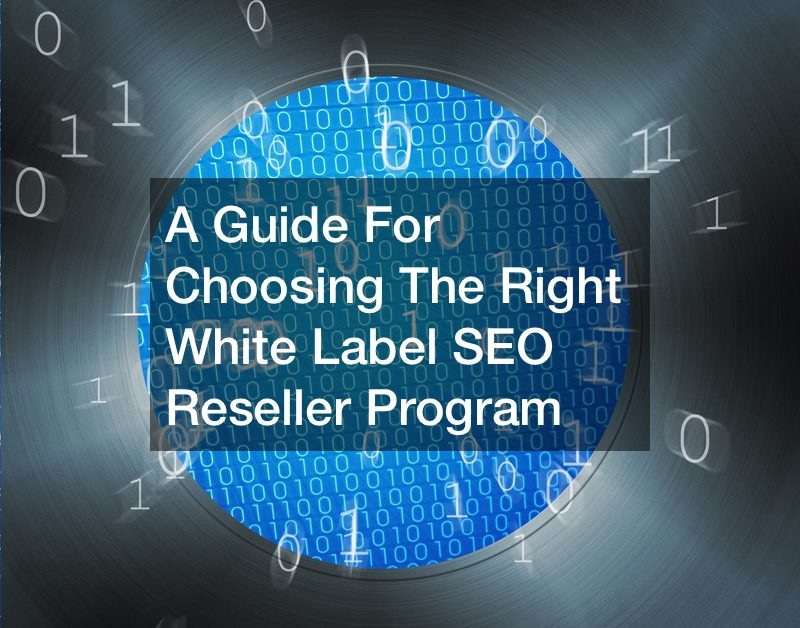 A Guide For Choosing The Right White Label SEO Reseller Program